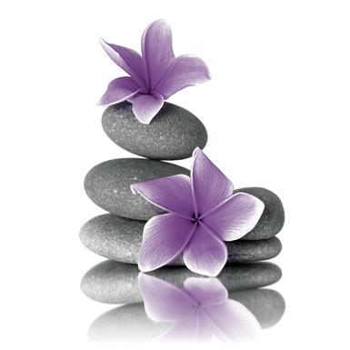 keilrahmenbild 35x35cm orchidee mit steinen lila ebay. Black Bedroom Furniture Sets. Home Design Ideas