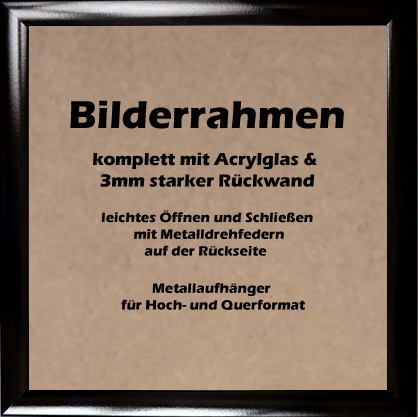 bilderrahmen schwarz hochglanz auch antireflex acrylglas verschiedene gr en ebay. Black Bedroom Furniture Sets. Home Design Ideas