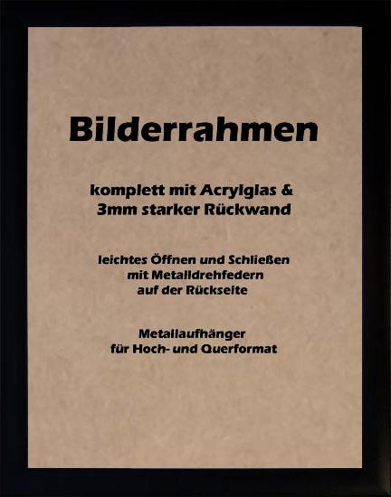 Bilderrahmen-Posterrahmen-Wechselrahmen-Schwarz-30-Groessen-Acrylglas-reflexfrei
