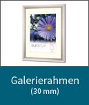 Galerierahmen